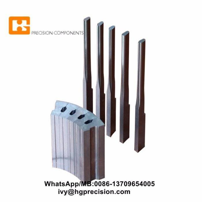 High Speed Stamping Mold Spare Parts-HG