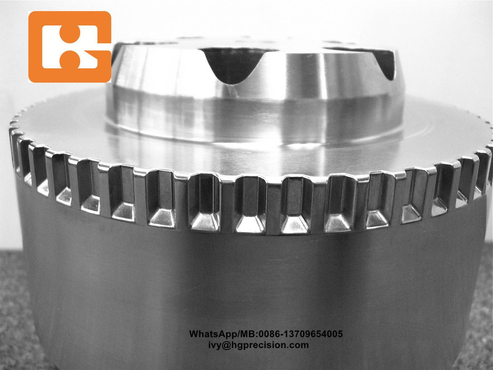 Die Casting Mold Punch-HG
